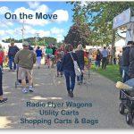Carts and Wagons for Shopping at a Flea Market