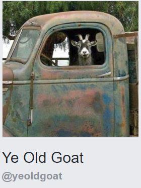 Ye Old Goat
