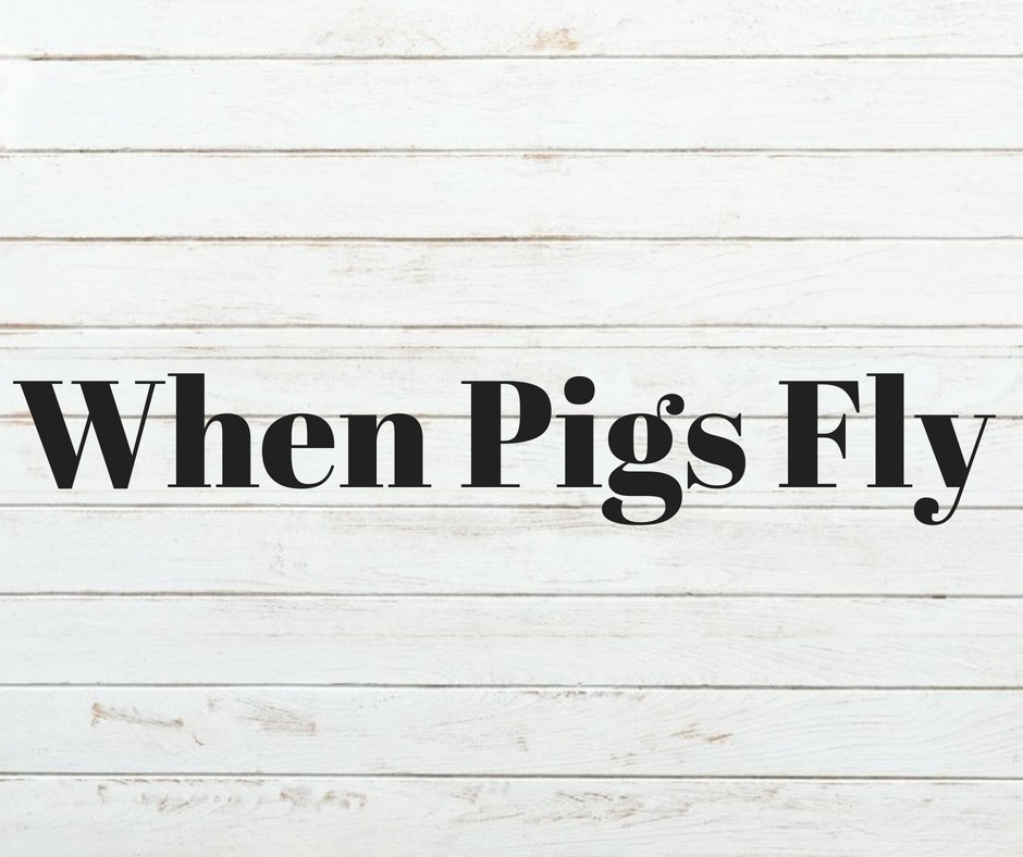 When Pigs Fly, Whitewater, WI